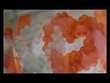 оранжевая свадьба Вячаслава и Алены